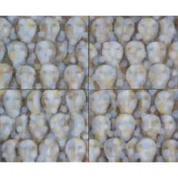 Rekviem / 2013-15 / akryl, plátno / 200 x 240 cm