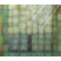 Svatý strom/ 2019/ akryl, plátno/ 145x170cm
