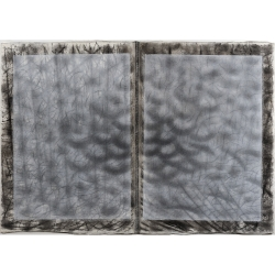 Kniha svítání / 2006 / uhel, gáza , papír / 70 x 100 cm